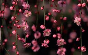 ¡Por fin es #primavera! #nosotrasquesomotannormales